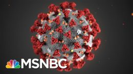Man In His 20s Tests Positive For Coronavirus In Boston | MSNBC 4