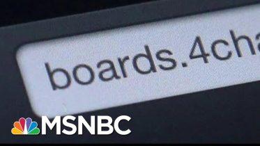 Internet Trolls Jammed Iowa Caucus Hotline For Reporting Results   Hallie Jackson   MSNBC 6