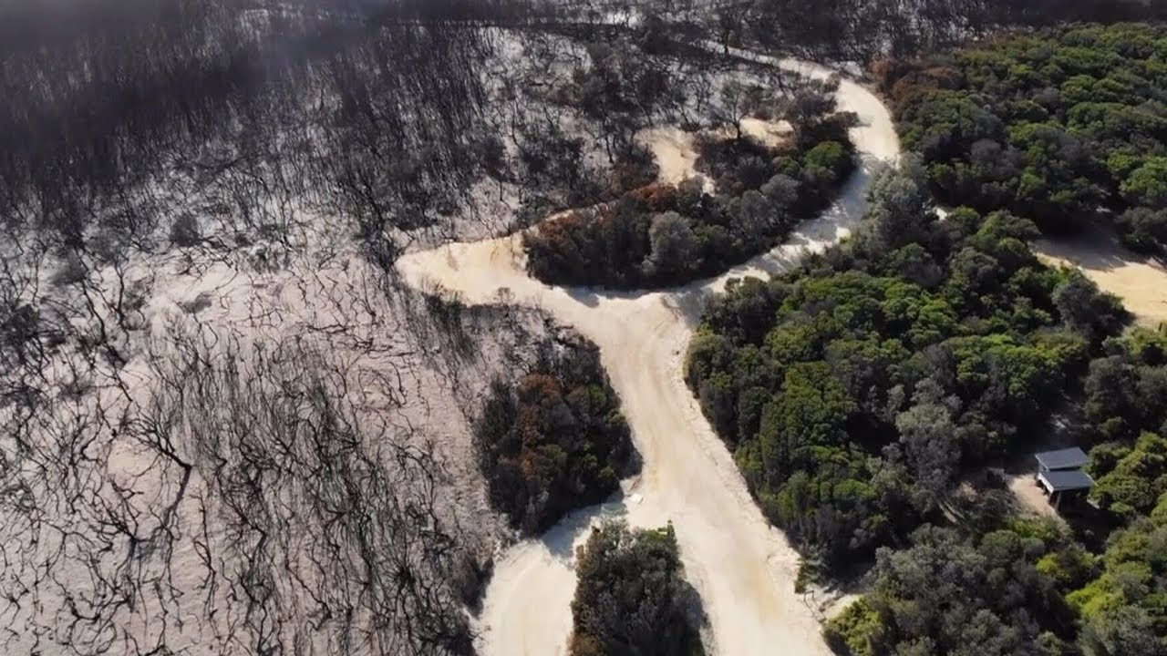 Drone footage shows how badly wildfire damaged this national park in Australia 3