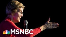 Searching For A Win, Warren Pulls TV Ads In Nevada And South Carolina | The 11th Hour | MSNBC 4