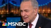 Chuck Schumer To Disheartened Democrats: 'Don't Give Up!' | Rachel Maddow | MSNBC 4