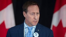 """MacKay calls Trudeau's trip to Africa a """"vanity project"""" 4"""
