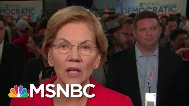 Elizabeth Warren: Trump Thinks Govt Is About Helping His 'Cronies, Family' | All In | MSNBC 6