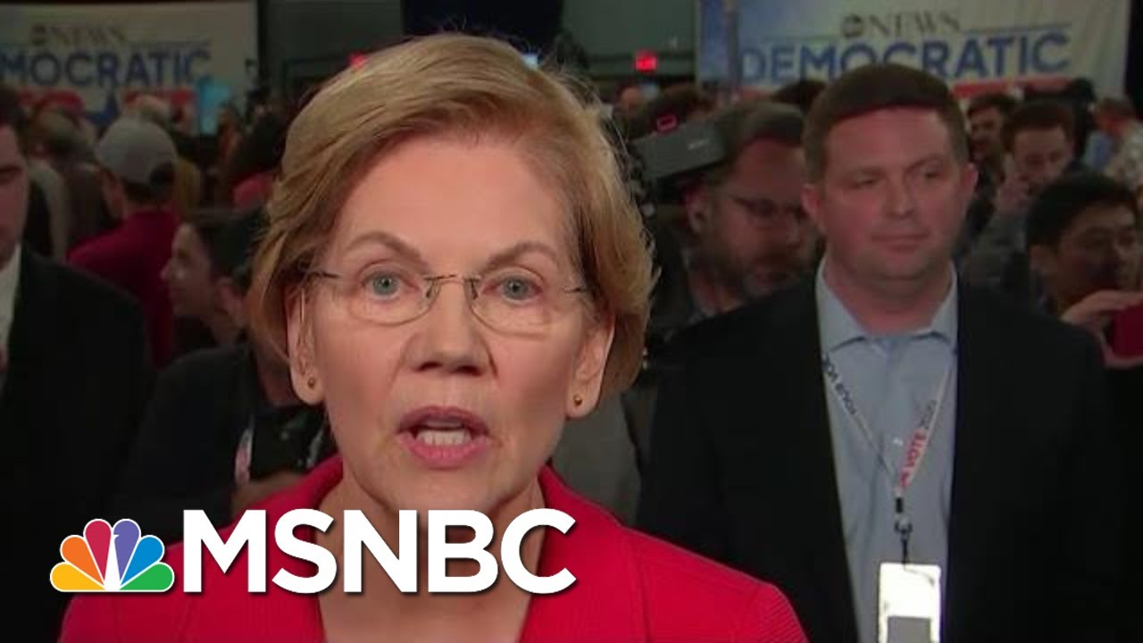 Elizabeth Warren: Trump Thinks Govt Is About Helping His 'Cronies, Family' | All In | MSNBC 1