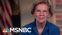 Elizabeth Warren Doesn't Rule Out Supporting Other Candidates' Tax Plans | The Last Word | MSNBC 7