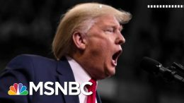 Trump NH Rally Chants 'Lock Her Up!' About Pelosi Ahead Of Dems' Primary | The 11th Hour | MSNBC 4