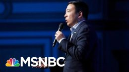 Andrew Yang Drops Out Of 2020 Race | MSNBC 3