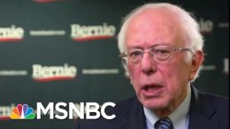 Sanders And Buttigieg Earned The Same Number Of Delegates In NH | MTP Daily | MSNBC 2