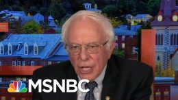 Bernie Sanders Responds To Culinary Union Flyer | All In | MSNBC 6