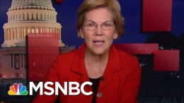 Elizabeth Warren On Her Call To End Trump Corruption | All In | MSNBC 1
