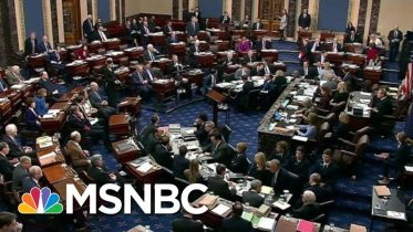 'The Senate Is Drowning And I'm Holding Its Head Under Water' | The Last Word | MSNBC 6