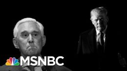 Trump Seems Poised To Pardon Convicted Associate Roger Stone | The 11th Hour | MSNBC 2