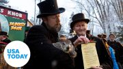 Groundhog Phil predicts early spring | USA TODAY 4