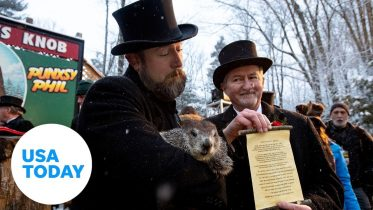 Groundhog Phil predicts early spring | USA TODAY 6