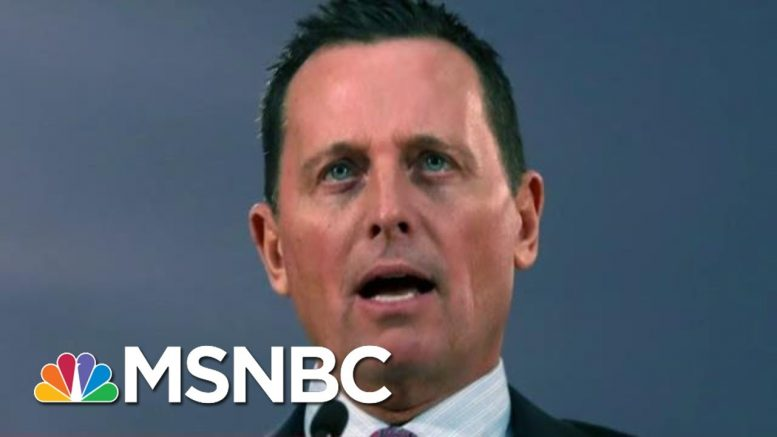 Trump To Install Loyalist With No Intelligence Experience As DNI | Rachel Maddow | MSNBC 1
