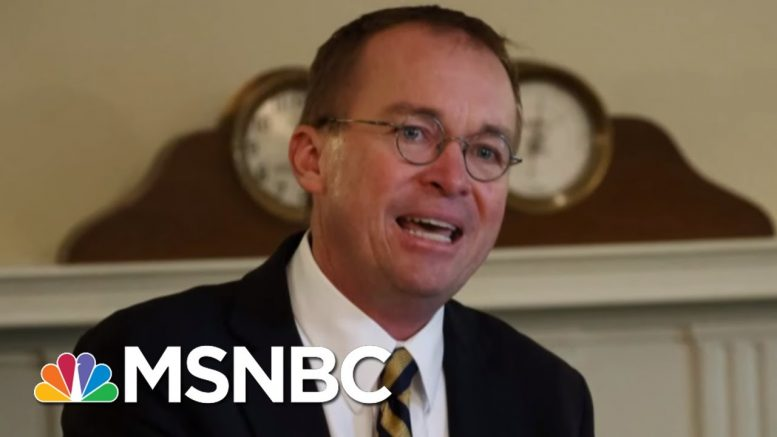 Mick Mulvaney Admits 'We Need More Immigrants' | All In | MSNBC 1
