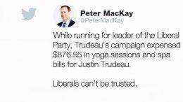 Will MacKay's social media attacks on Trudeau backfire? 5