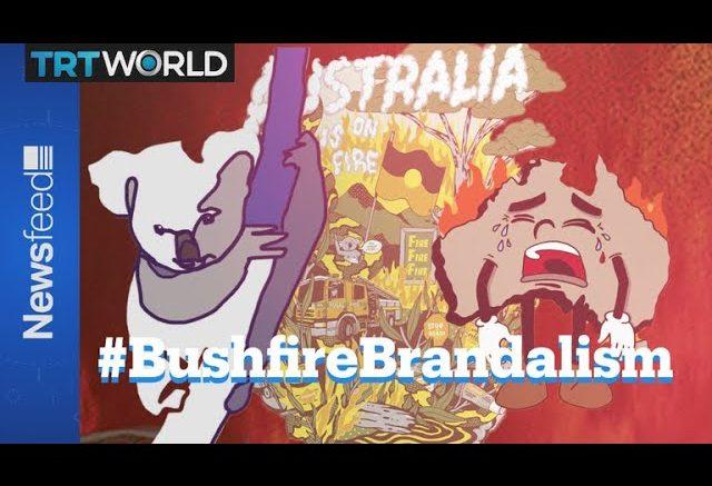 Bushfire Brandalism : A guerrilla campaign 1