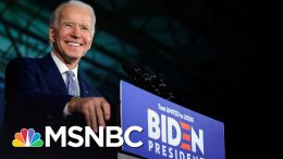 Wallace: The Democratic Establishment Had Nothing To Do With Biden's Super Tuesday Success | MSNBC 4
