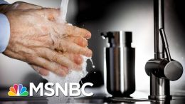 Virus Expert Explains How To Protect Yourself From Coronavirus | The 11th Hour | MSNBC 1