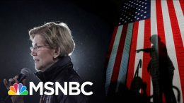 Mara Gay: Warren Was Running In The Shadow Of Hillary Clinton's Loss   The 11th Hour   MSNBC 7