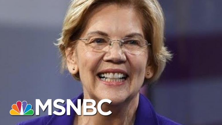 Warren: Time To Think More Creatively About 'Organized Nastiness' Online | Rachel Maddow | MSNBC 1