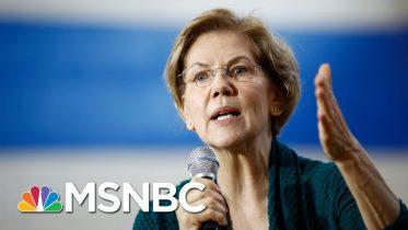 Trump Coronavirus Incompetence 'Like Its Own Natural Disaster': Warren | Rachel Maddow | MSNBC 6