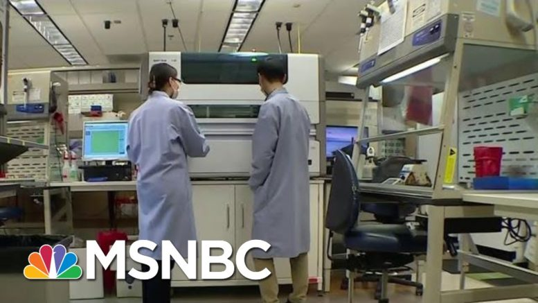 Why Were There Delays In Coronavirus Testing Kits? | MTP Daily | MSNBC 1