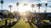 Coachella among events being postponed and cancelled by coronavirus fears 4