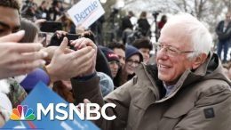 Pressure Grows For Democratic Nominee To Choose A Female Running Mate | Andrea Mitchell | MSNBC 7