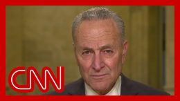 Schumer: Stimulus relief is 'unemployment insurance on steroids' 1