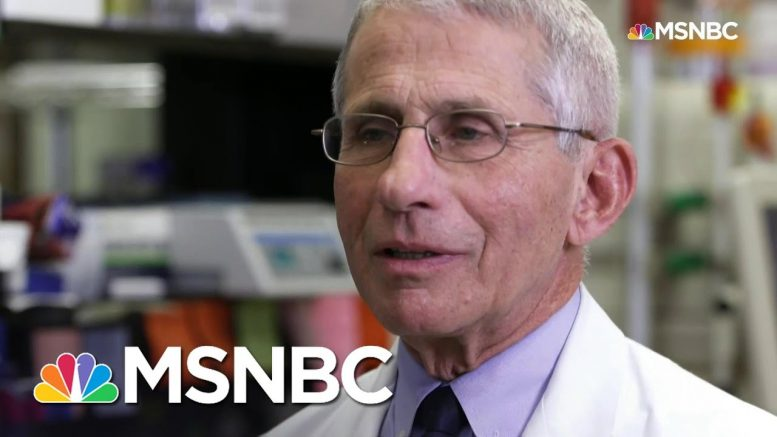 Dr.Anthony Fauci: Coronavirus Now At 'Outbreak' And 'Likely Pandemic Proportions' | MSNBC 1