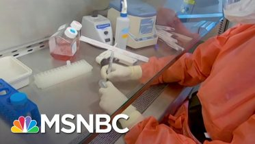 Coronavirus Vaccine Could Take Up To A Year To Develop | MSNBC 10