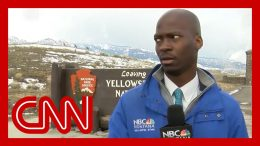 Reporter's hilarious reaction to approaching bison goes viral 5