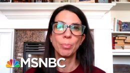 Is It Safe To Fly To Visit Ill, Elderly Parents? | MSNBC 1
