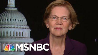 Elizabeth Warren Explains Economic Stimulus Coronavirus Package | All In | MSNBC 6