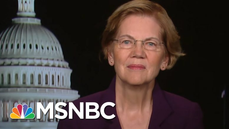 Elizabeth Warren Explains Economic Stimulus Coronavirus Package   All In   MSNBC 1