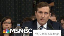 Recovering From Coronavirus, Daniel Goldman Describes Testing Ordeal | Rachel Maddow | MSNBC 1