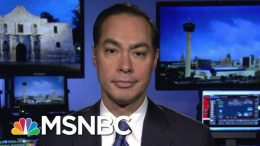 Julian Castro: Moderate Dems Will Go To Warren, Not Bernie | Hallie Jackson | MSNBC 3