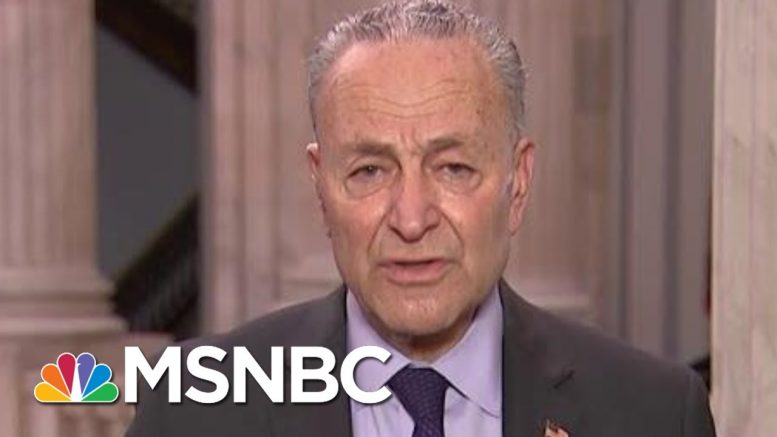 Sen. Schumer: We Need Bold, Quick, Bipartisan Action | Morning Joe | MSNBC 1
