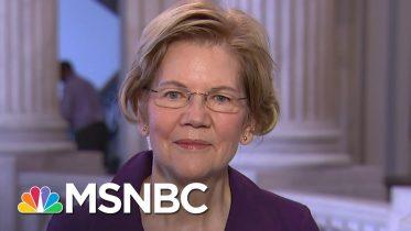 Sen. Elizabeth Warren On The Standoff Over Stimulus Bill | Stephanie Ruhle | MSNBC 6