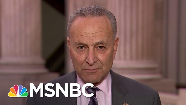 Sen. Chuck Schumer: Any Coronavirus Bailout 'Needs To Put The Workers First' | The Last Word | MSNBC 1