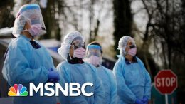 Infectious Disease Expert: Coronavirus Will Overwhelm US Health Care System | The 11th Hour | MSNBC 9