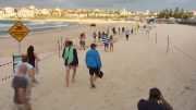 Aussies enjoy beaches after lockdown 4