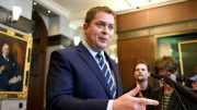 Government could be auditing 'after the fact': Scheer on funds for small businesses 3