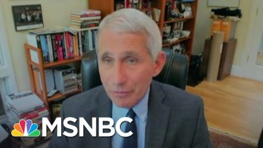Fauci, Top Health Officials Testify Remotely For Senate Hearing | The 11th Hour | MSNBC 10