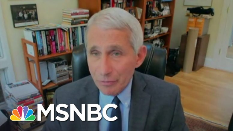 Fauci, Top Health Officials Testify Remotely For Senate Hearing | The 11th Hour | MSNBC 1