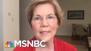 Sen. Warren: Americans Suffering From Lack Of Federal Leadership   Rachel Maddow   MSNBC 6