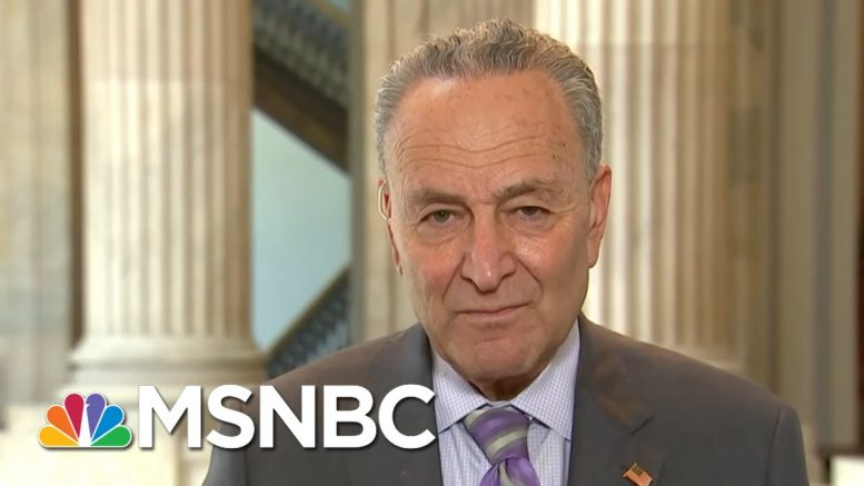 Schumer: What Was Outlined In The House Bill Is 'Necessary And Urgent' | Andrea Mitchell | MSNBC 1