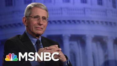 The Right-Wing Media's Assault On Dr. Tony Fauci | Deadline | MSNBC 6